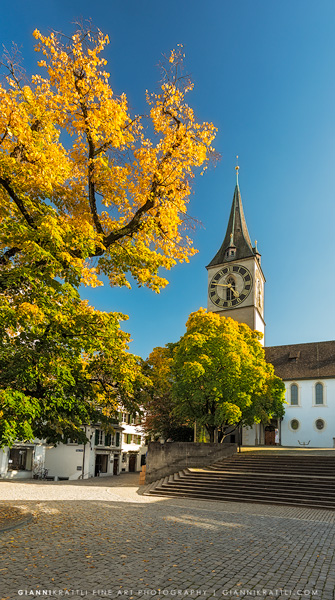 Autumn Colors in Zurich